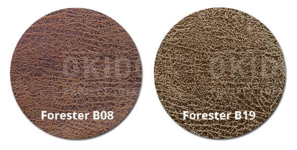 Forester B08 B19 kleurrondjes met logo 600x304 - Stoel Jip B08