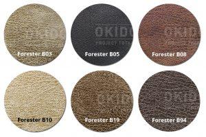 Forester Hoofdfoto kleuren 300x200 - Armstoel Omega Special