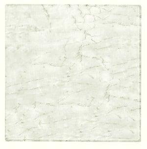 070 Marmor bianco - Terrastafelblad Werzalit 070 marmer bianco