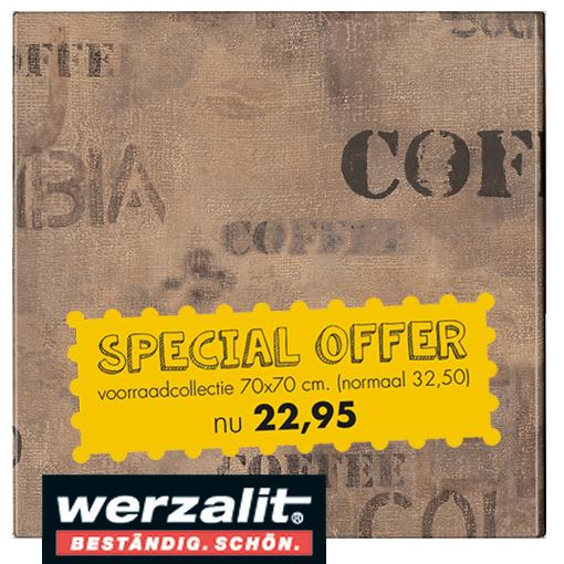 HOOFDFOTO 5 - Terrastafelblad Werzalit 113 Koffiezak