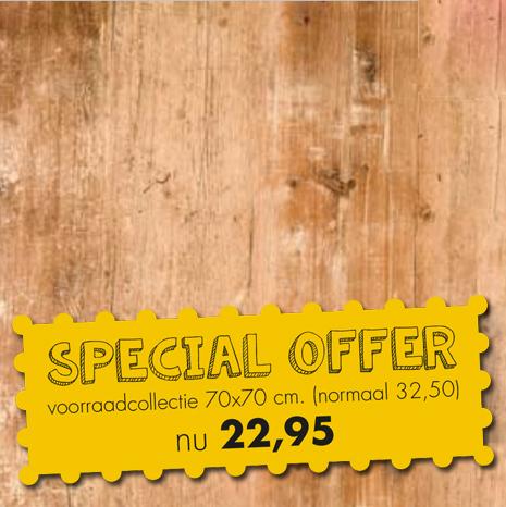 HOOFDFOTO met Special Offer 1 - Terrastafelblad Werzalit 295 Findus