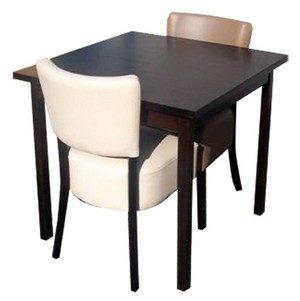stoel Lisa 2x met tafel 70x70 met 4 poten 300x301 - Lisa Set 2