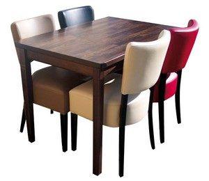 stoel Lisa 4x met tafel 120x80 met 4 poten 300x260 - Lisa Set 1